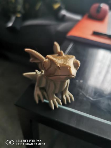 A very cute 3D printed dragon!