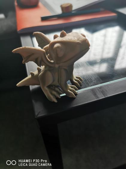 Leighton's 3D dragon print.