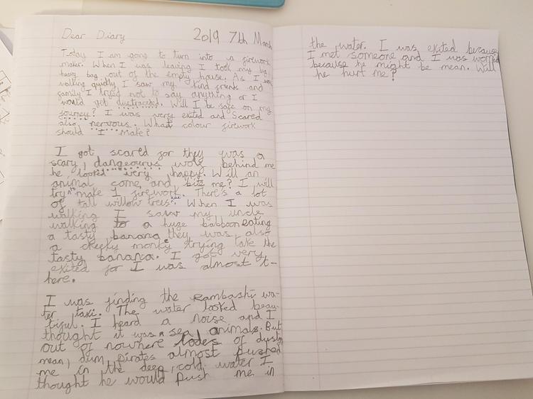 Zara's diary (Elm)