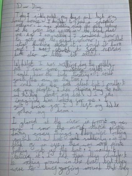 Freya C's diary (Lime)