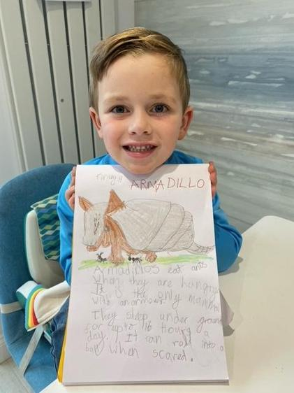 Facts about armadillos by Finley