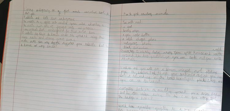Fantastic instruction writing by Leo