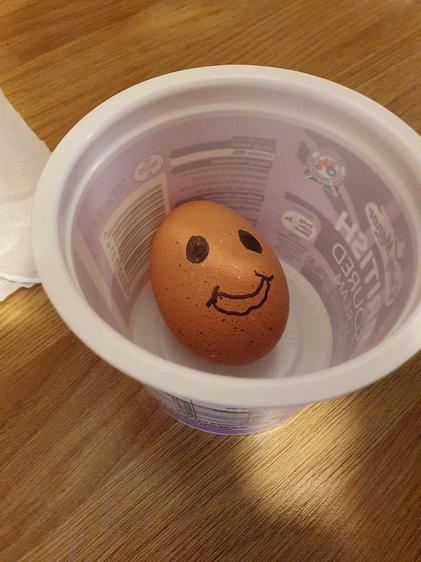 Kieran's egg, Steve