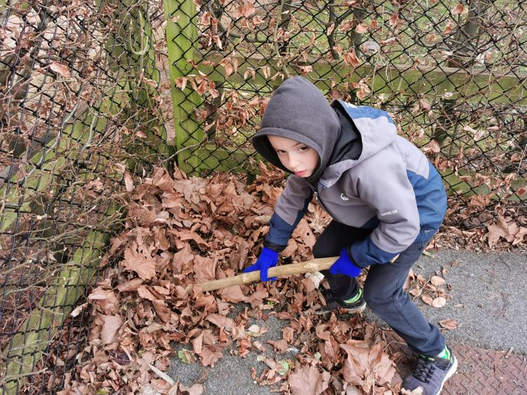 Searching in the leaves outside of Blackhorse Primary School.