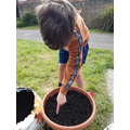 Joseph planting his seeds!