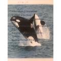 Maggie's amazing killer whale poem