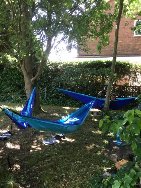 Our new hammocks.