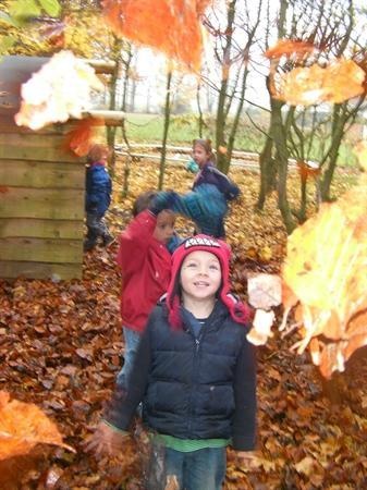 Forest School - Autumn