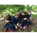 Bush craft and forest school.