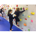 On the climbing wall.