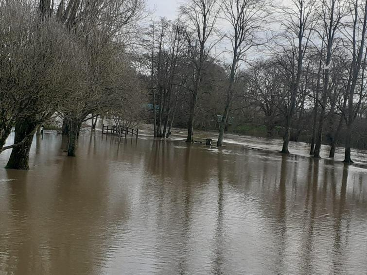 Olivia's picture of flooding