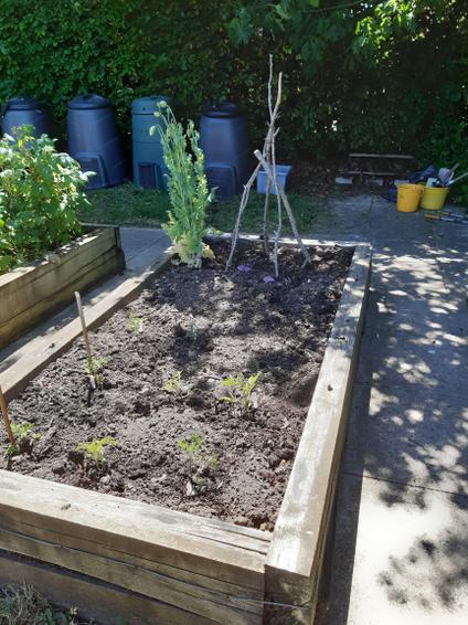 The bin yielded 3 barrows of compost
