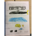 Beautiful pictures George C, well done!