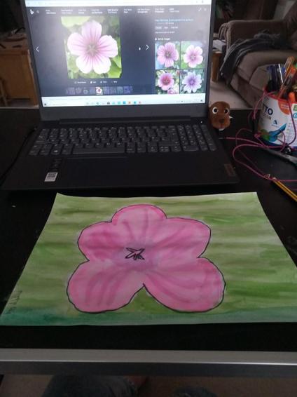 Lillie art 1