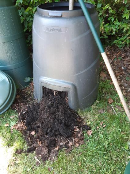 Rich, dark fruit compost!