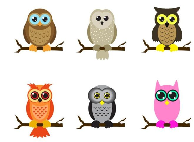 In Owl class we have the Reception = Barn Owls and the Year 1 = Tawny Owls