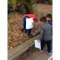 Bug hunting around school