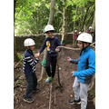 Low Ropes needs trust and balance