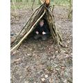 Expert shelter maker!