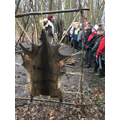 Deer skin was used for...?