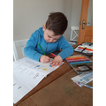 Concentrating hard on linguistic phonics work