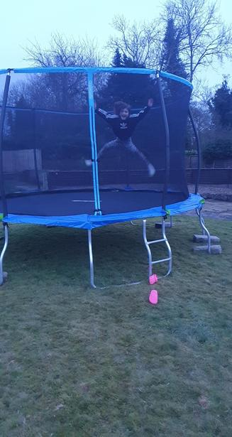 Phoebe bouncing really high!