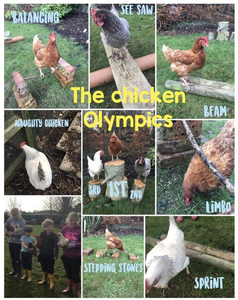 Maisy and the Chicken Olympics