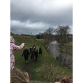 we noticed the river was very high