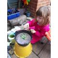 Clara in the garden.
