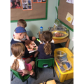 We read to find out about the chicks.