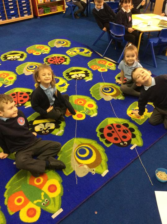 Wool game - using the words longest and shortest.