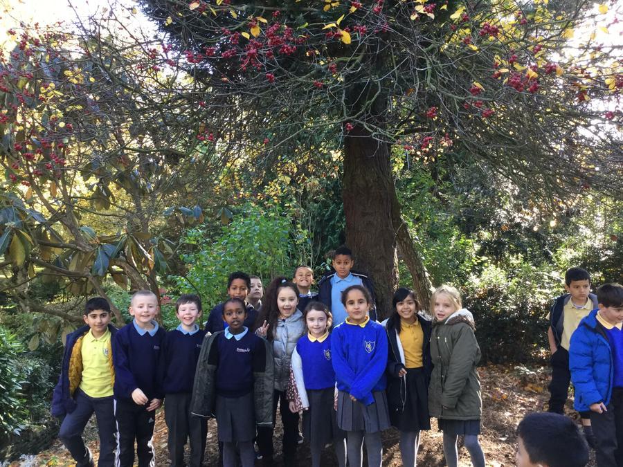 Botanic and Holy Rosary P5s in Botanic Gardens