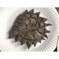 Cast Fossil - Ammonite