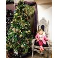 Christmas garden centre visit