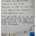 Year 4 representation of Hindu beliefs about rebirth as an explanation and diagram.