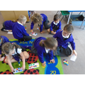Using ten frames to count and recognise patterns.
