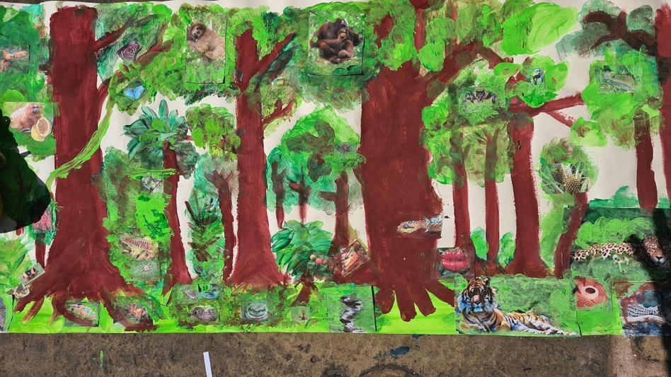 BHJ (2O) designed his own rainforest!