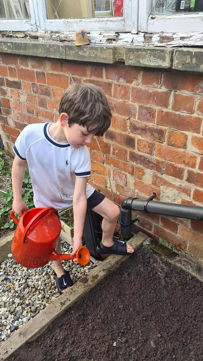 BHJ (2O) Has been helping with the gardening!