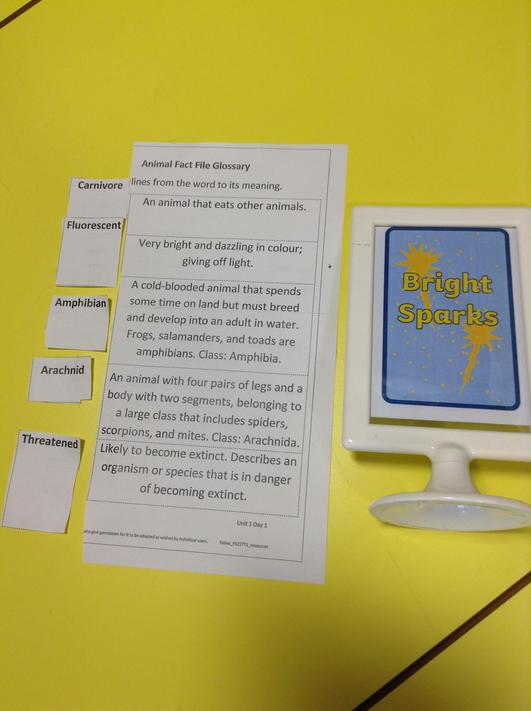 Glossary- matching words to their meaning