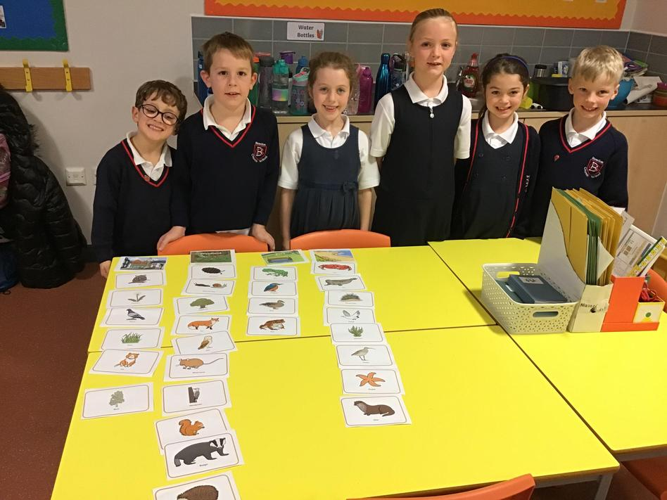 Learning about different habitats in Science