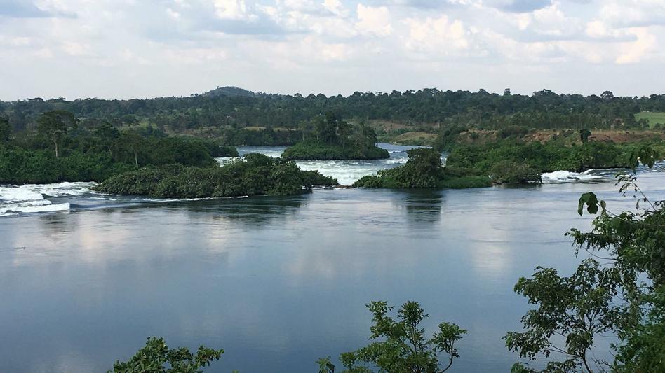 The beautiful river Nile