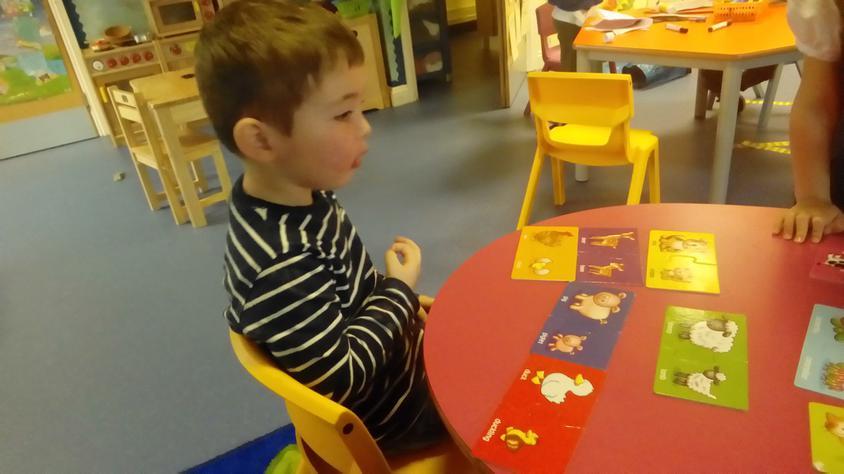 This week we have been exploring baby animals.