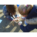 Soil Science in Forest School testing permability (1).JPG
