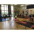 PE Gymnastics  (4).JPG