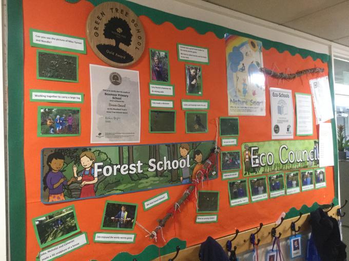 Forest schools.JPG