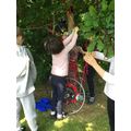 Forest schools and Art - Tree weaving (20).JPG