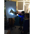 Science - what is a shadow hand puppets (7).JPG