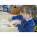 Writing sentences to re-tell Jack and the Beanstalk.