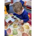 Painting dinosaur fossils.