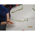 Measuring a playdough beanstalk.